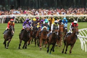 melbourne cup_horses corner